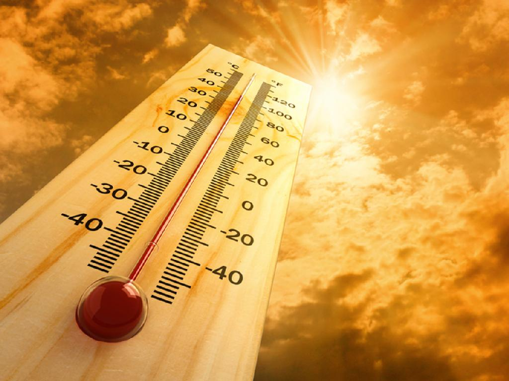 hot-wheather-bulgarian-commodities-ltd